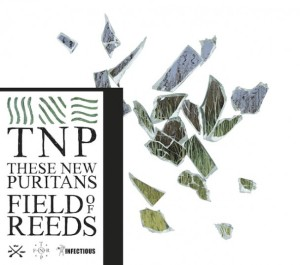 These-New-Puritans-single-cover-Field-Of-Reeds